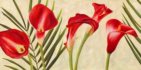 Framed Red Callas Print