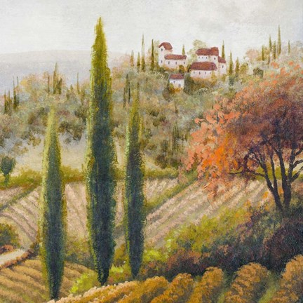 Framed Tuscany Vineyard II Print