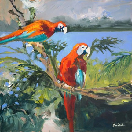 Framed Parrots at Bay II Print