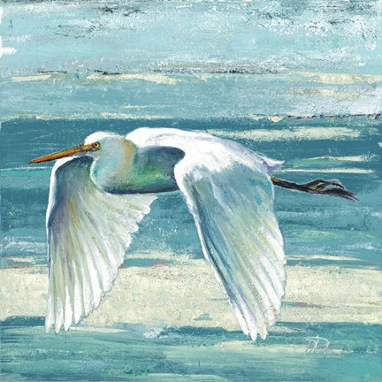 Framed Great Egret II Print