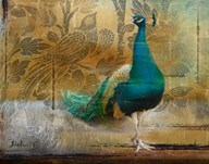 Feathered Dreams II  Fine Art Print