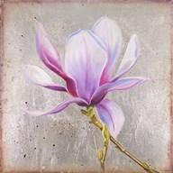 Magnolia on Silver Leaf II  Fine Art Print