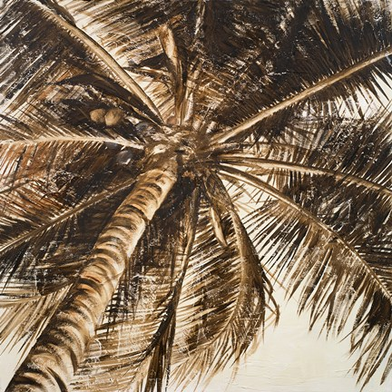 Framed Coconut Palm II Print