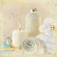 Silver Bath I  Fine Art Print