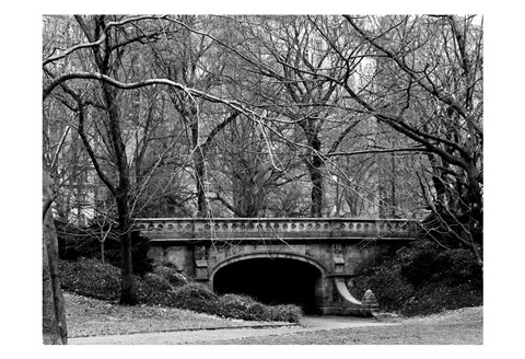 Framed Central Park Bridge 2 Print