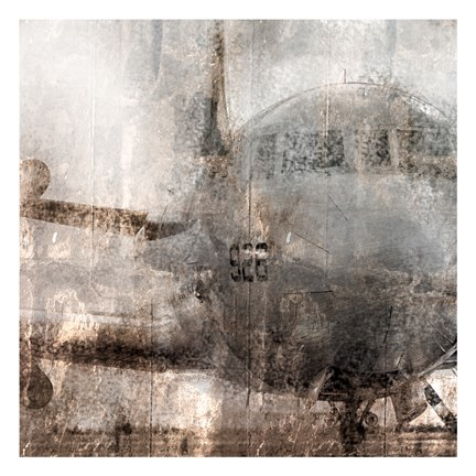 Framed Oxidized Aircraft Print