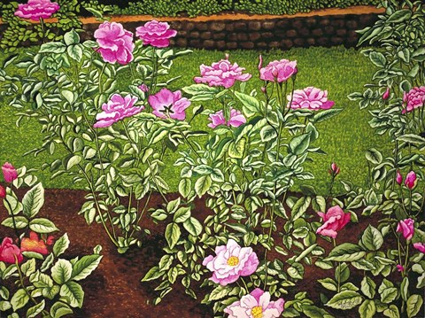 Framed Rose Garden Print