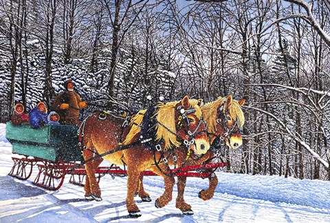 Framed Sleigh Ride At Chestnut Ridge, Orchard Park, Ny Print