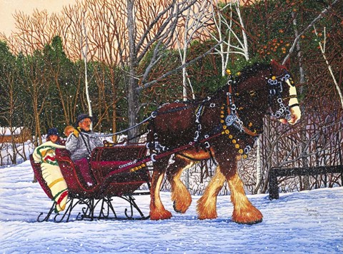 Framed Sleigh Ride At Letchworth Park, Ny Print