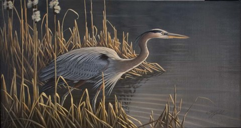 Framed Stalking The Edge - Heron Print