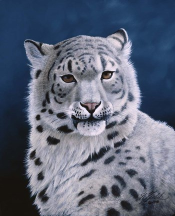 Framed Young Snow Leopard Print