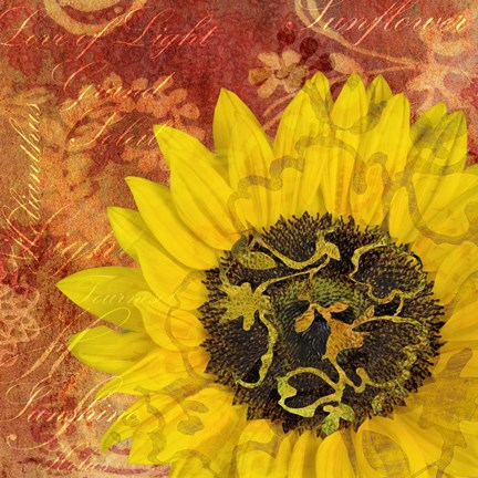 Framed Sunflower - Love of Light Print
