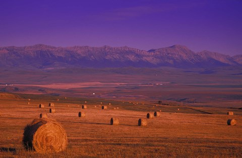 Framed Hay Bales with Mountains Print