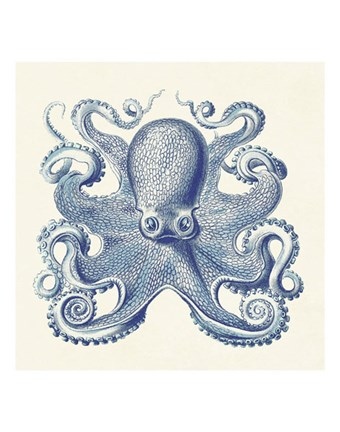Framed Octopus I Print