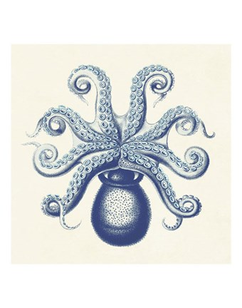 Framed Octopus II Print