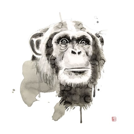 Framed Chimp Print