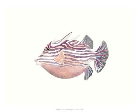 Framed Watercolor Tropical Fish II Print