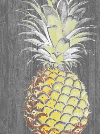 Framed Vibrant Pineapple Splendor II Print