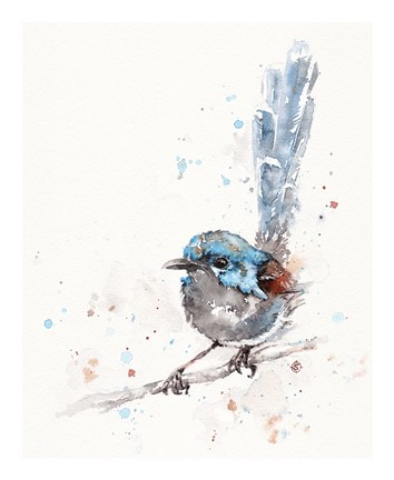 Framed Mischief in the Making (Variegated Fairy Wren) Print
