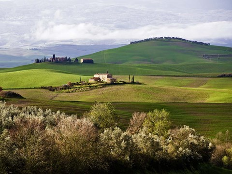 Framed Tuscan Countryside Print