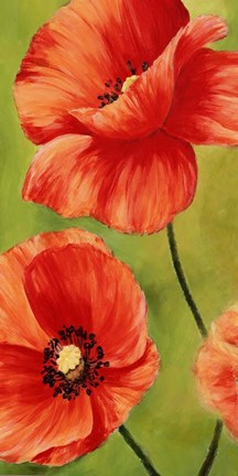 Framed Poppies in the Wind I Print