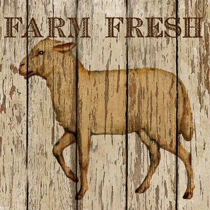 Framed Farm Fresh Lamb Print