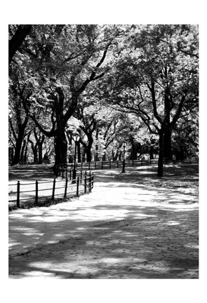Framed Central Park Walk 2 Print