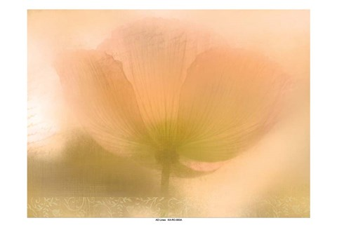 Framed Golden Poppy Print