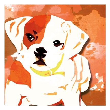 Framed Dog in Color 2 Print