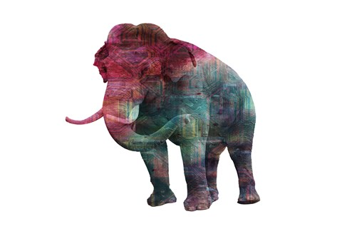 Framed Elephant Memory In Color Print