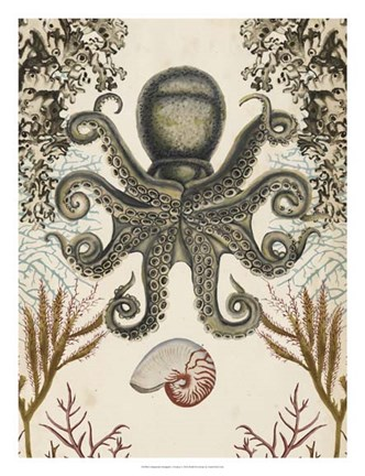 Framed Antiquarian Menagerie - Octopus Print