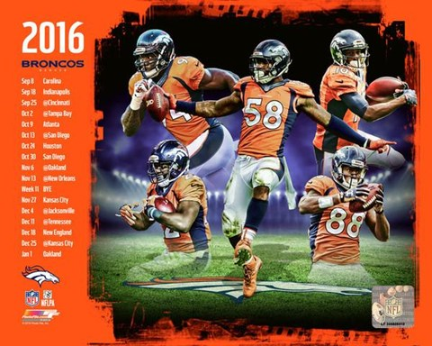 Framed Denver Broncos 2016 Team Composite Print