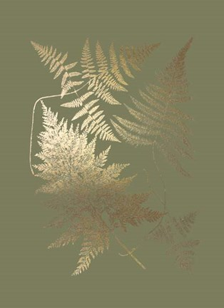 Framed Gold Foil Ferns III on Mid Green - Metallic Foil Print