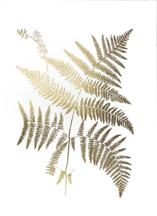 Framed Gold Foil Ferns I - Metallic Foil Print