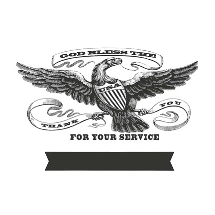 Framed Patriotic Eagle Service Print