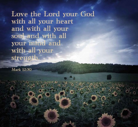 Framed Mark 12:30 Love the Lord Your God (Sunflowers) Print