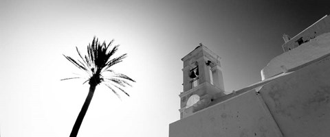 Framed Low angle view of a palm tree near a church , Ios, Greece Print
