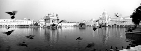 Framed Reflection of a temple in a lake, Golden Temple, Amritsar, Punjab, India Print