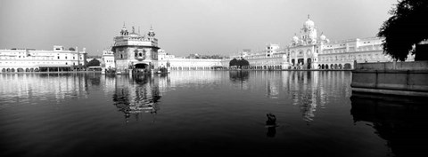Framed Temple at the waterfront, Golden Temple, Amritsar, Punjab, India Print