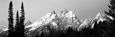 Framed Cathedral Group Grand Teton National Park WY Print