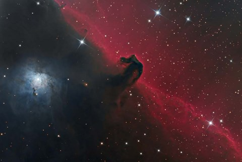 Framed Horsehead Nebula in the Constellation Orion Print