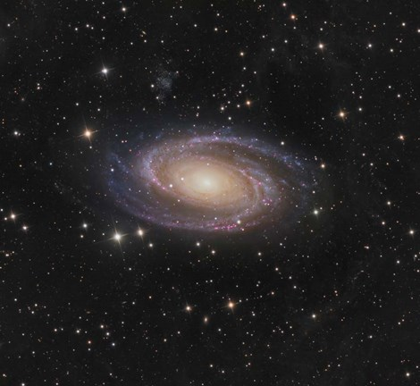 Framed Messier 81 spiral galaxy in the Constellation Ursa Major Print