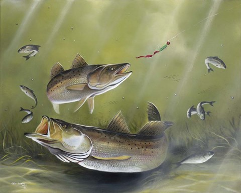 Speckled Trout Fine Art Print By Geno Peoples At