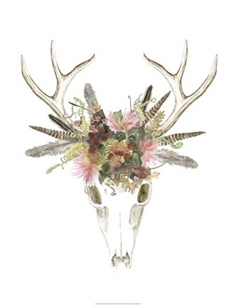 Deer Skull Amp Flowers I Fine Art Print By Naomi Mccavitt At