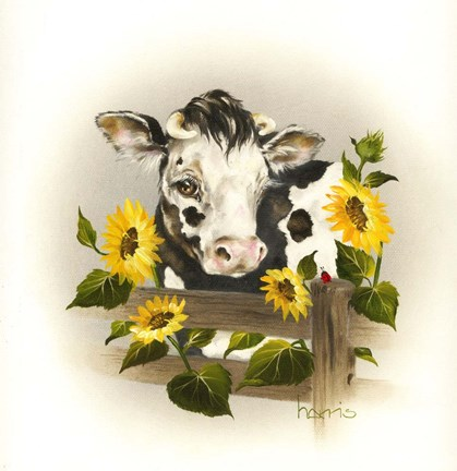 Cow Amp Sunflowers Fine Art Print By Peggy Harris At