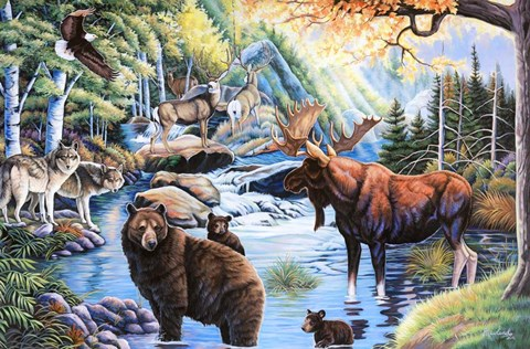 North American Wildlife Fine Art Print By Jenny Newland At
