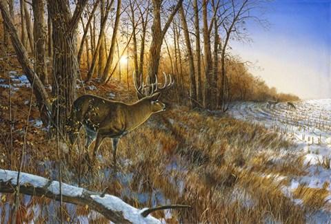 Passing The Buck Fine Art Print By Jim Hansel At