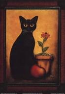 Framed Cat II Art