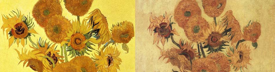 Sunflowers, 1888 yellow by Vincent Van Gogh
