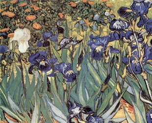Irises in the Garden, Saint-Remy, c.1889 by Vincent Van Gogh